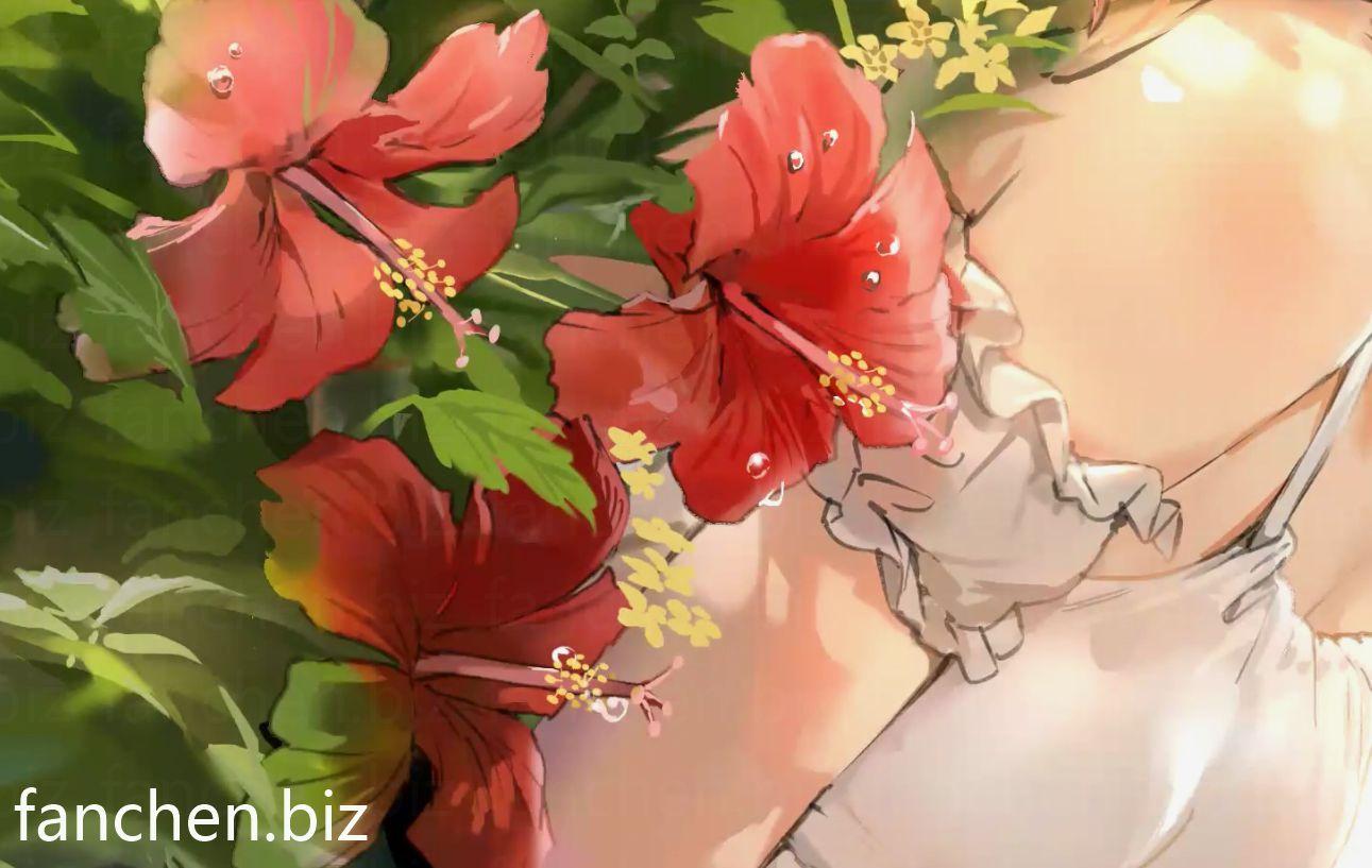原画视频 P站画师ANMlCG原画插画设计教程视频 9.8G-FANCHENBIZ