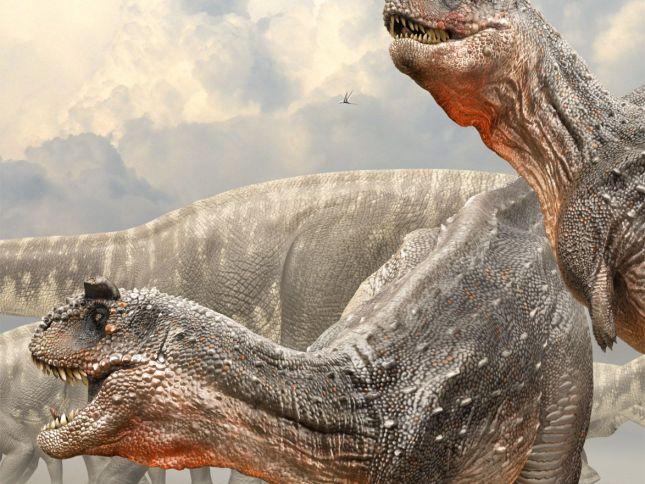 ZBursh笔刷 恐龙蜥蜴肌理套装 19.8M